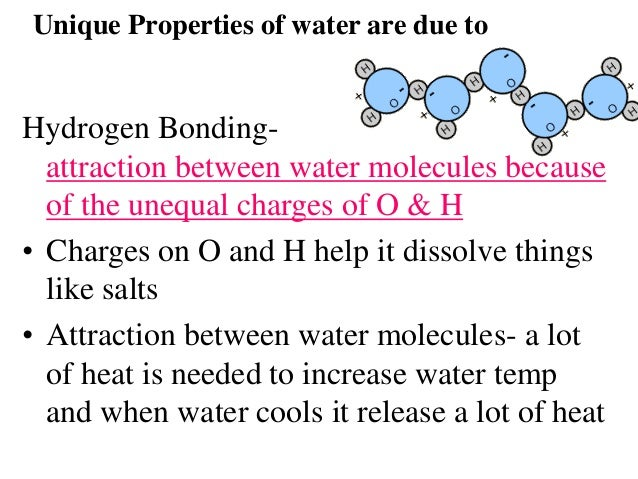 unique properties of water essay The unique qualities that water possesses retain the fitness of life on earth surface tension is one unique property of water that makes life possible on earth surface tension is the cohesion of water molecules at the surface of a body of water.