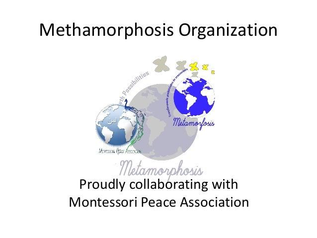 Methamorphosis Organization Proudly collaborating with Montessori Peace Association