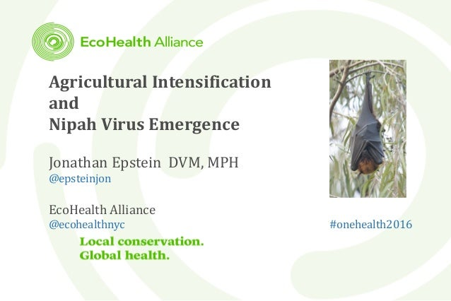 Agricultural Intensification and Nipah Virus Emergence Jonathan Epstein DVM, MPH @epsteinjon EcoHealth Alliance @ecohealth...