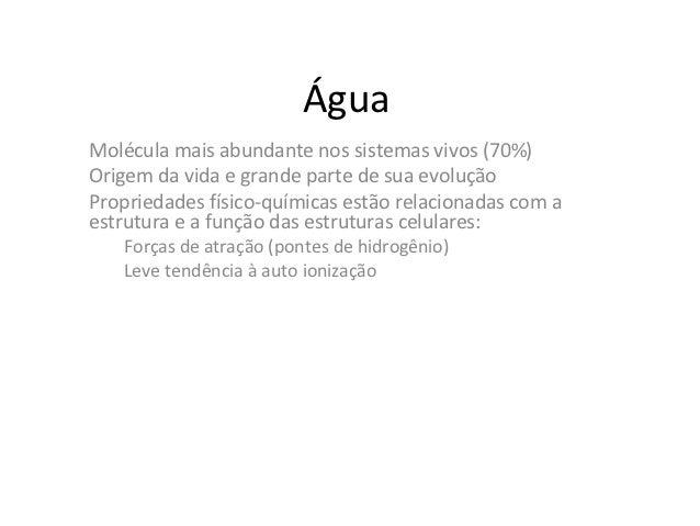 ÁguaMolécula mais abundante nos sistemas vivos (70%)Origem da vida e grande parte de sua evoluçãoPropriedades físico-quími...