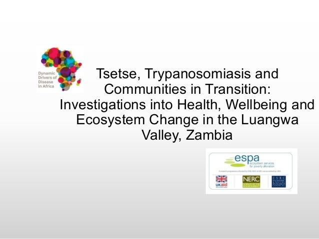 Tsetse, Trypanosomiasis and Communities in Transition: Investigations into Health, Wellbeing and Ecosystem Change in the L...