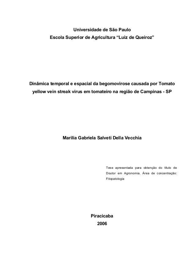 """Universidade de São Paulo Escola Superior de Agricultura """"Luiz de Queiroz"""" Dinâmica temporal e espacial da begomovirose ca..."""