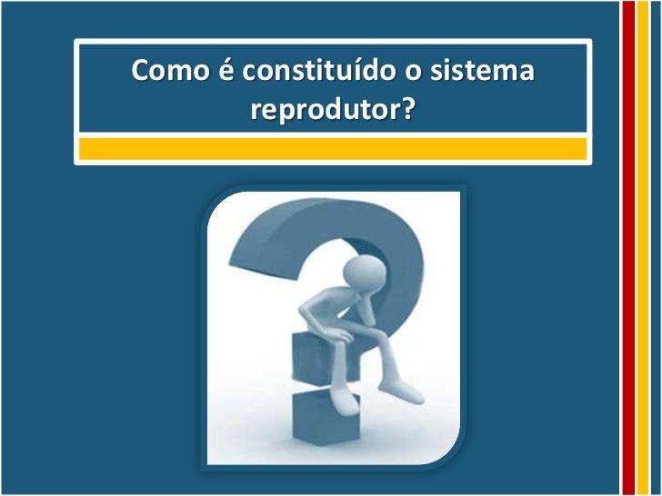Como é constituído o sistema        reprodutor?