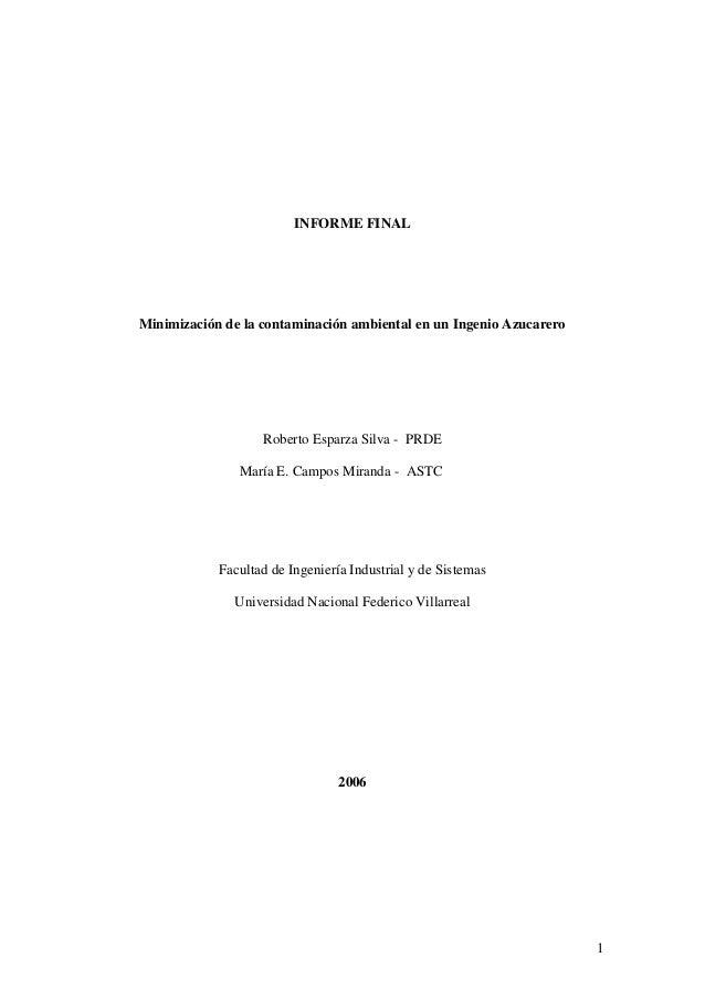 INFORME FINALMinimización de la contaminación ambiental en un Ingenio Azucarero                   Roberto Esparza Silva - ...