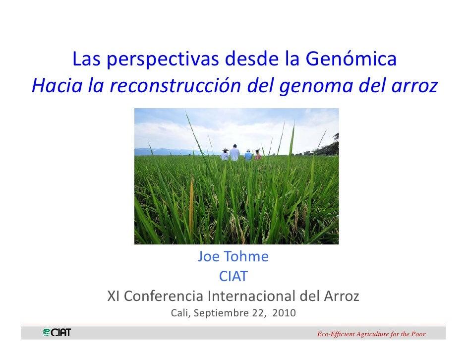 LasperspectivasdesdelaGenómica         p p Hacialareconstruccióndelgenomadelarroz                          JoeT...