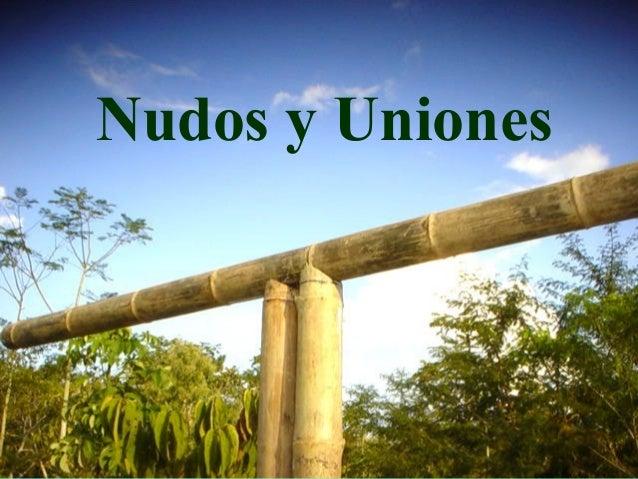 Nudos y Uniones