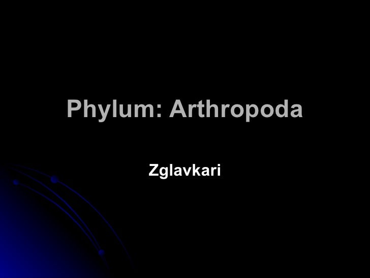 Phylum: Arthropoda Zglavkari