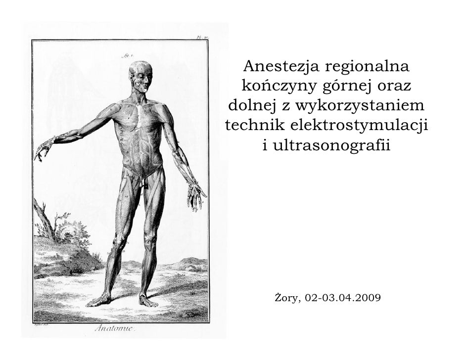Anestezja regionalna   kończyny górnej oraz  dolnej z wykorzystaniem technik elektrostymulacji      i ultrasonografii     ...