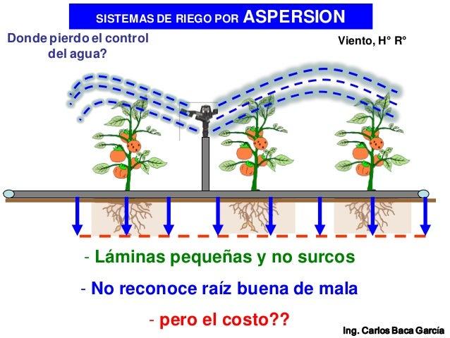 01 vision general de los sistemas de riego a presi n for Proyecto de riego por aspersion