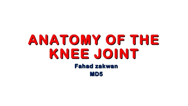 01 knee anatomy anatomy of theanatomy of the knee jointknee joint fahad zakwanfahad zakwan md5md5 ccuart Images