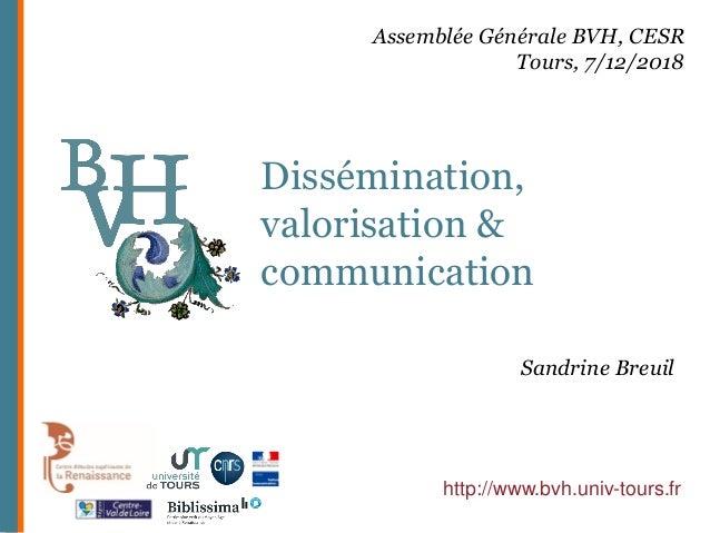 Dissémination, valorisation & communication http://www.bvh.univ-tours.fr Assemblée Générale BVH, CESR Tours, 7/12/2018 San...