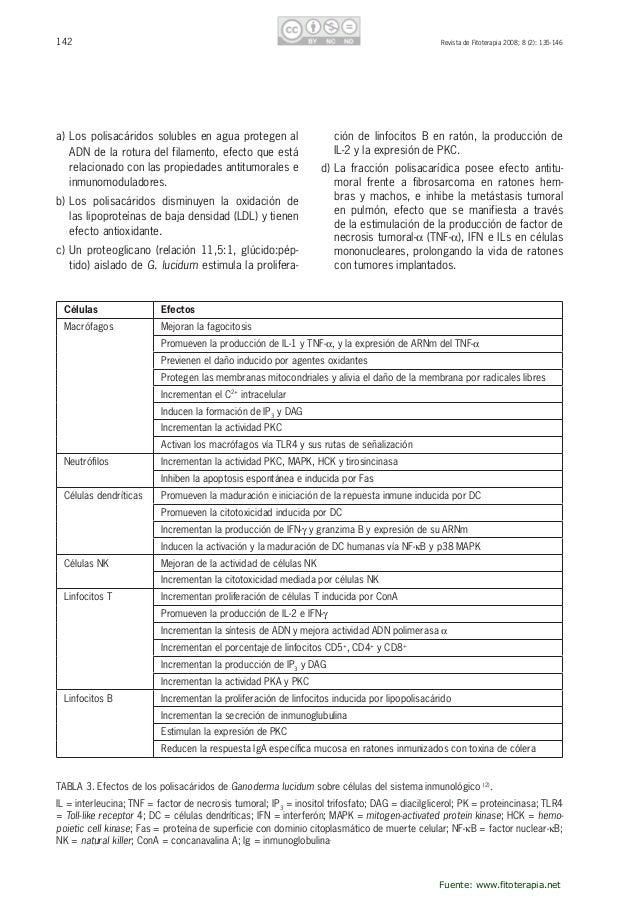 143RevistadeFitoterapia2008;8(2):135-146 e)Las glicoproteínas hidrosolubles de G. lucidum poseenpropiedades...