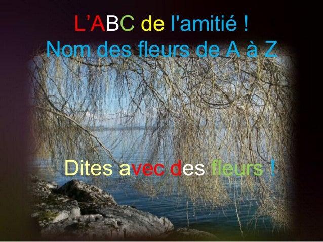 L'ABC de l'amitié ! Nom des fleurs de A à Z Dites avec des fleurs !