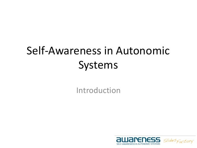 Self-Awareness in Autonomic Systems Introduction