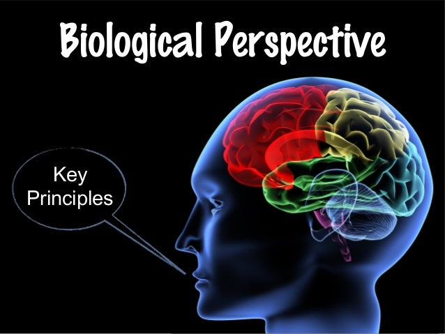 Biological Perspective Key Principles