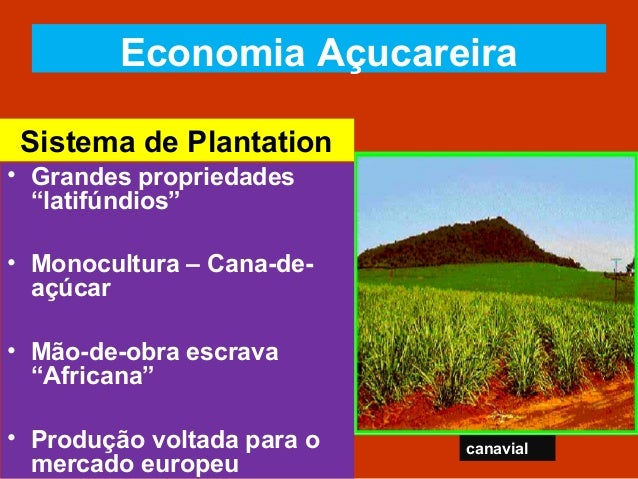 Brasil: Economia Colonial