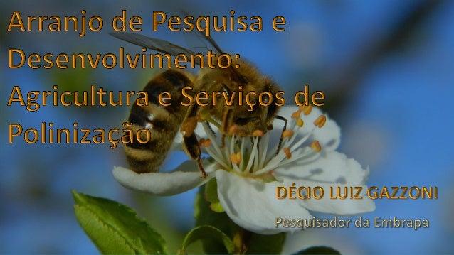 1. Potencial do serviço ambiental de polinização Conhecimento das principais espécies de abelhas polinizadoras Avaliação d...