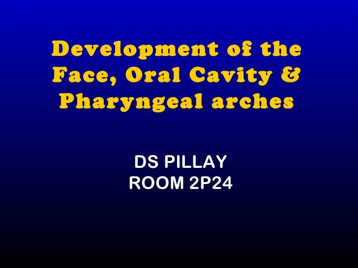 Development of theFace, Oral Cavity &Pharyngeal arches     DS PILLAY     ROOM 2P24
