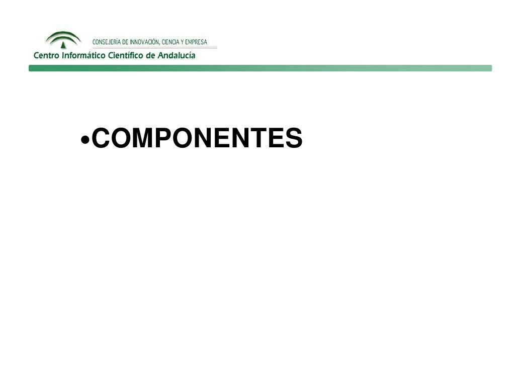 •COMPONENTES
