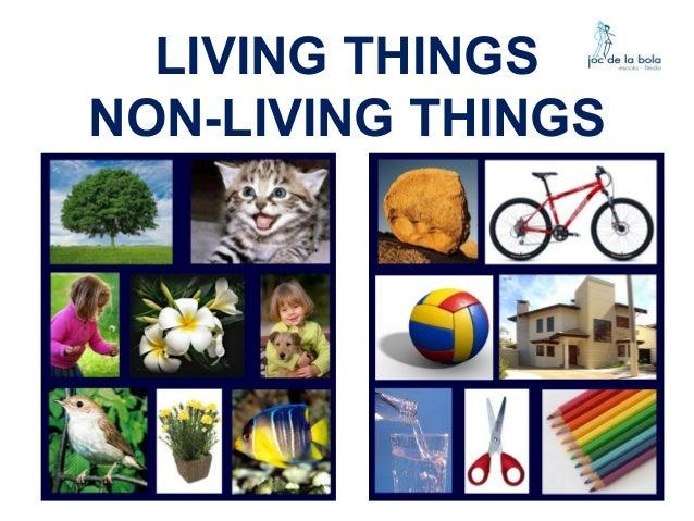 LIVING THINGS NON-LIVING THINGS