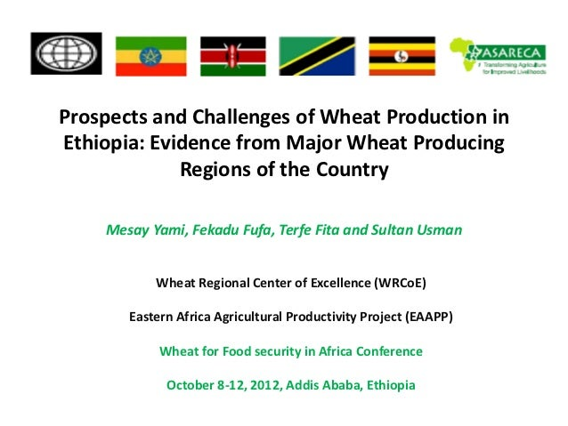Prospects and Challenges of Wheat Production inEthiopia: Evidence from Major Wheat Producing             Regions of the Co...