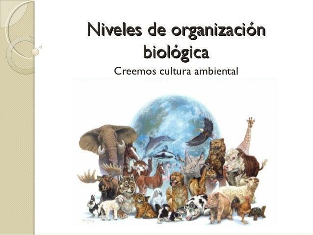 Niveles de organización       biológica   Creemos cultura ambiental