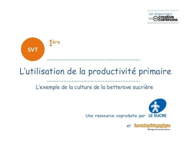 Un diaporama                                                       en         1ère  SVTL'utilisation de la productivité pr...