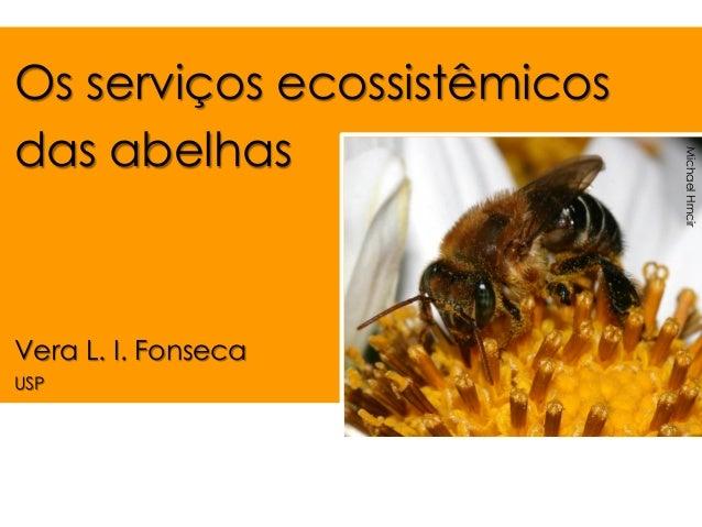 Os serviços ecossistêmicos das abelhas  Vera L. I. Fonseca  USP  Michael Hrncir