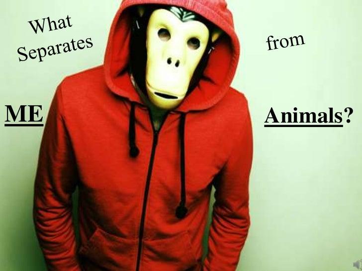 ME   Animals?