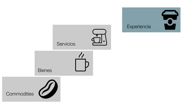 Commodities Bienes Servicios Experiencia