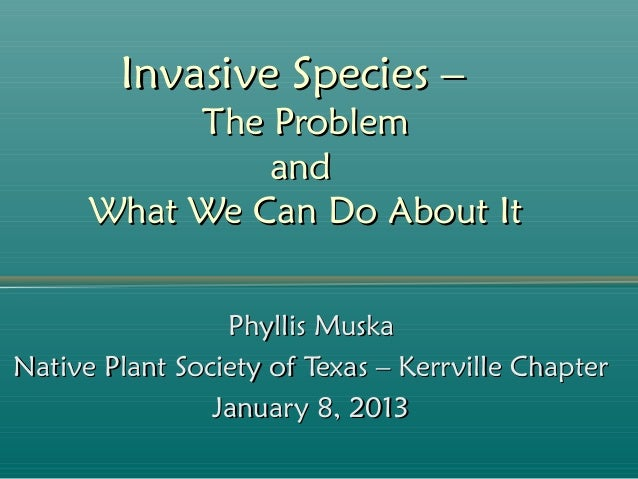 Invasive Species –           The Problem               and      What We Can Do About It                 Phyllis MuskaNativ...