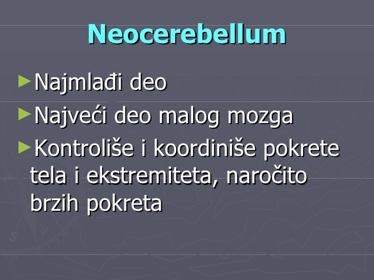 Neocerebellum <ul><li>Najmlađi deo </li></ul><ul><li>Najveći deo malog mozga </li></ul><ul><li>Kontroliše i koordiniše pok...