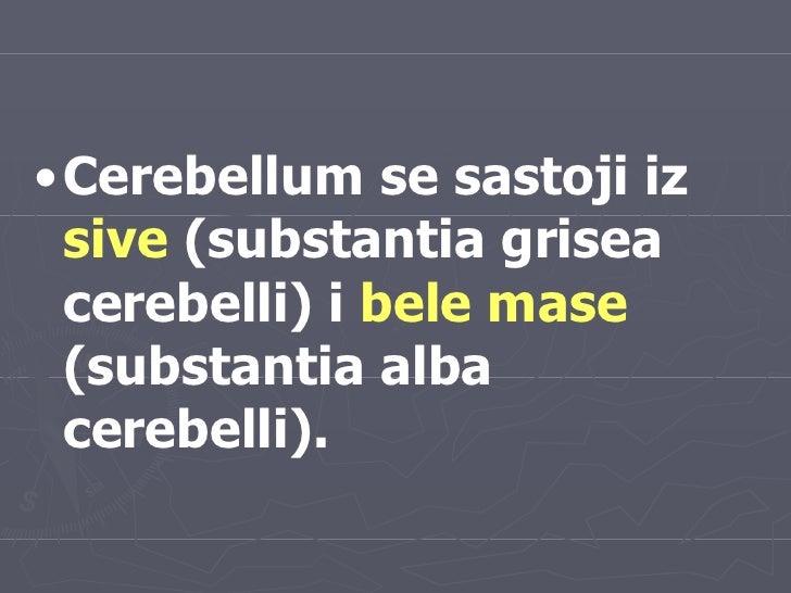 <ul><li>Cerebellum se sastoji iz  sive  (substantia grisea cerebelli) i  bele mase  (substantia alba cerebelli). </li></ul>