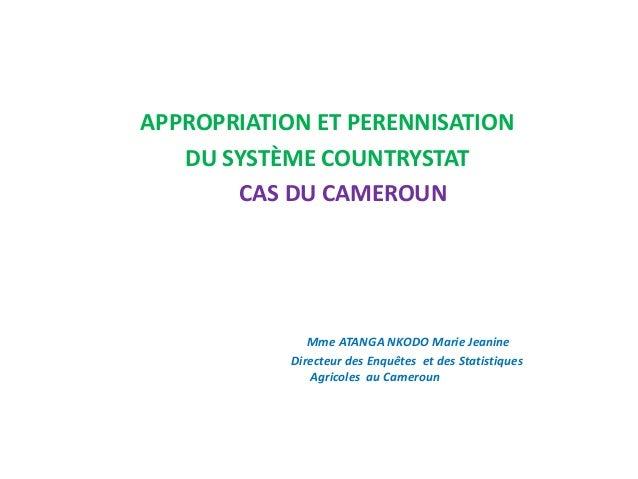 APPROPRIATION ET PERENNISATION DU SYSTÈME COUNTRYSTAT CAS DU CAMEROUN Mme ATANGA NKODO Marie Jeanine Directeur des Enquête...