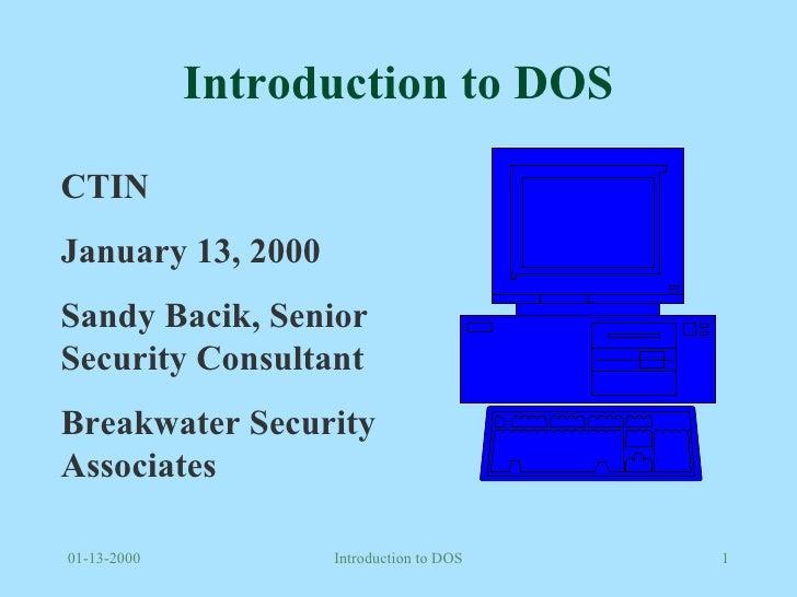Introduction to DOS CTIN January 13, 2000 Sandy Bacik, Senior Security Consultant Breakwater Security Associates