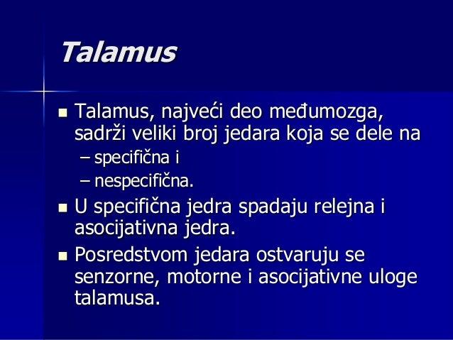 Asocijativne uloge talamusa:  Talamus učestvuje u gruboj diskriminaciji senzornog modaliteta;  On aktivira primarne kort...