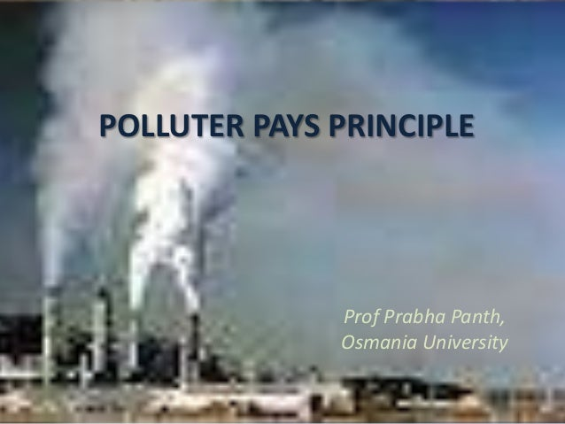 Polluter Pays Principle on Water Slide Diagram