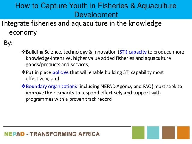 aquaculture as a livelihood strategy the 2018-7-14 restoring livelihoods with psychosocial support  reasons it is important to consider psycho-social and mental health needs when designing livelihood programs.