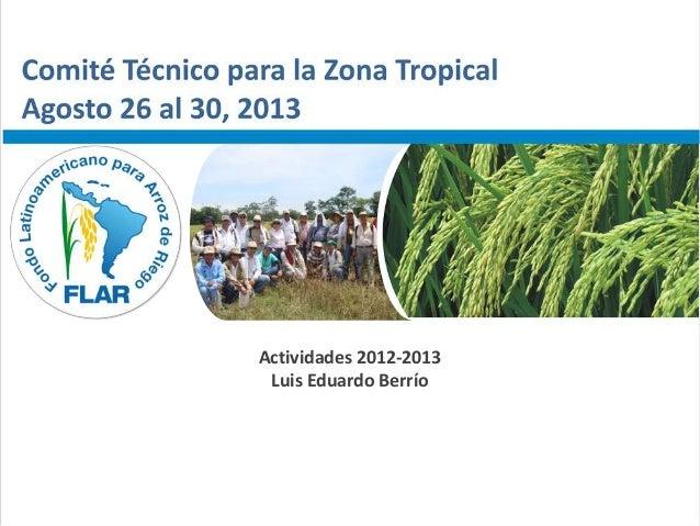 Comité Técnico para la Zona Tropical – Agosto 26 al 30, 2013 Actividades 2012-2013 Luis Eduardo Berrío