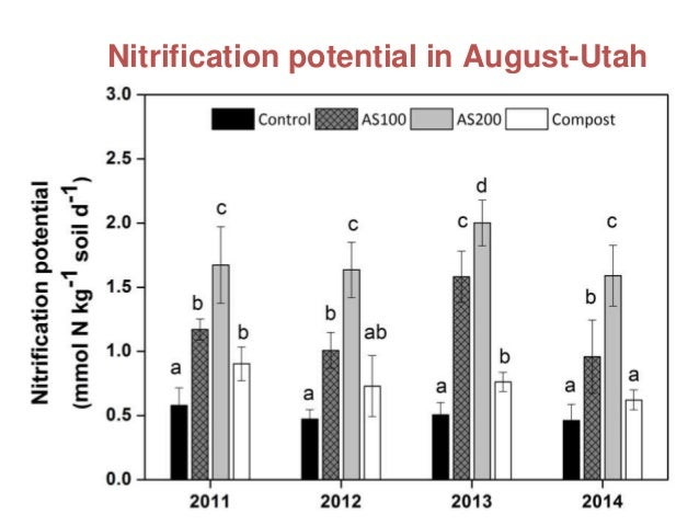 Functional and Molecular Diversity in Nitrogen Cycle