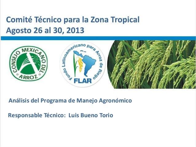 Análisis del Programa de Manejo Agronómico Responsable Técnico: Luis Bueno Torio