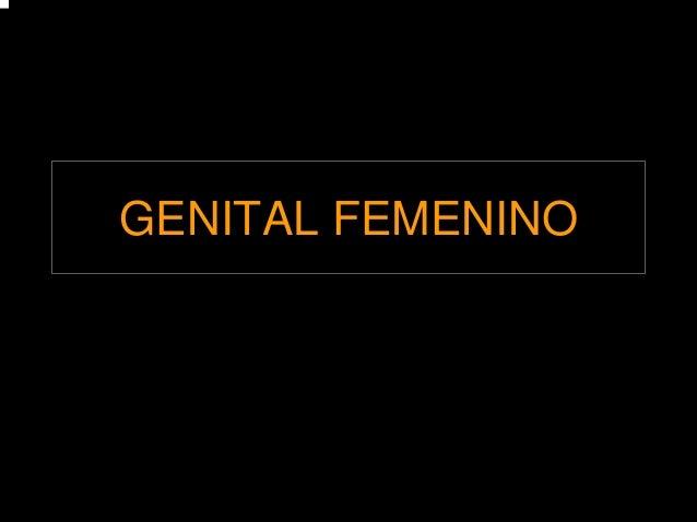 GENITAL FEMENINO
