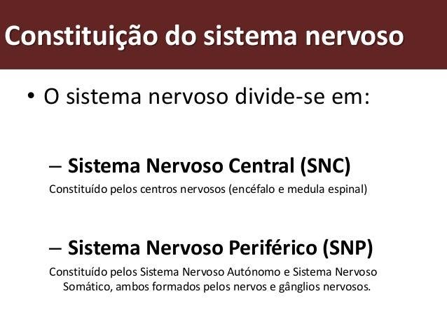 Sistema nervoso central • O Sistema Nervoso Central (SNC) é   um centro de comando, constituído   pelos centros nervosos: ...