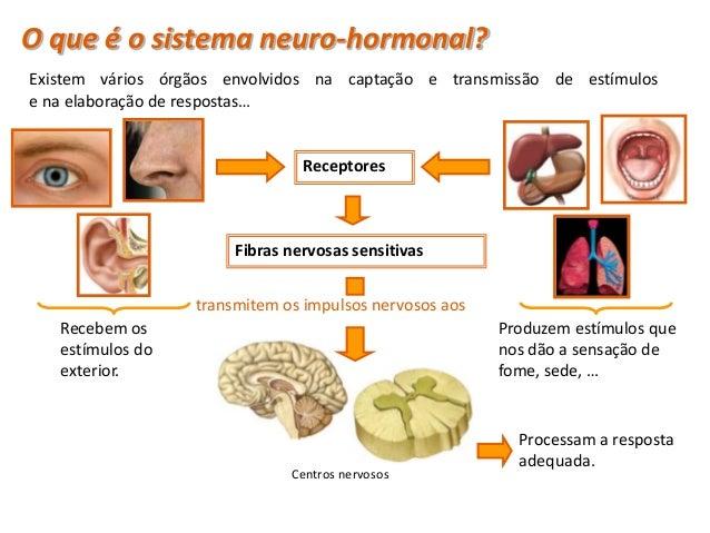 Condução do Impulso nervosoA transmissão das informações no sistema nervoso ocorre sob a formade impulsos nervosos. propag...