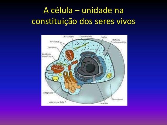 A célula – unidade na constituição dos seres vivos