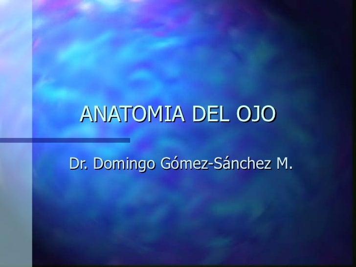 ANATOMIA DEL OJO Dr. Domingo Gómez-Sánchez M.