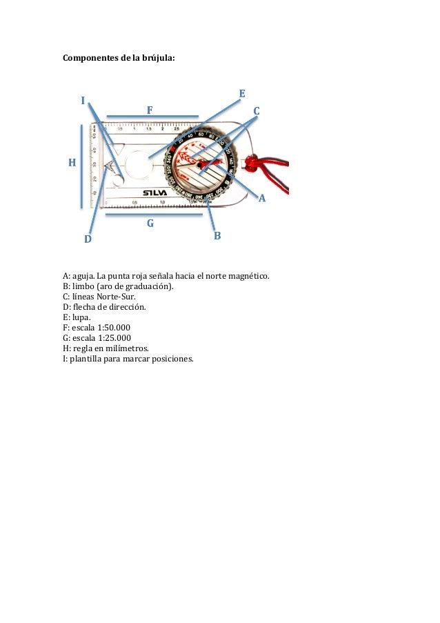 Componentes  de  la  brújula:                    A:  aguja.  La  punta  roja  señala  haci...