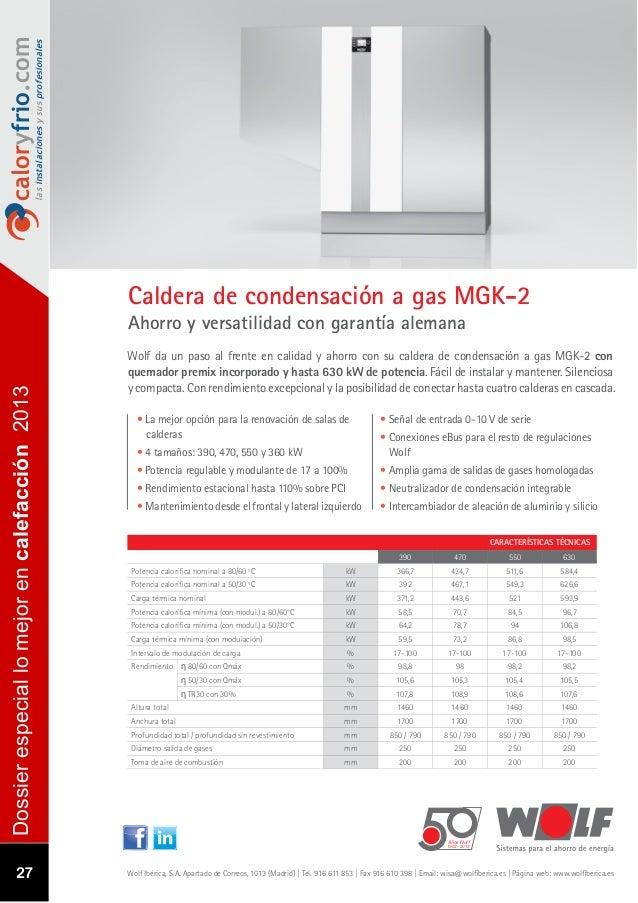 Especial los mejores productos del a o 2013 en calefacci n - Cual es la mejor caldera de condensacion ...