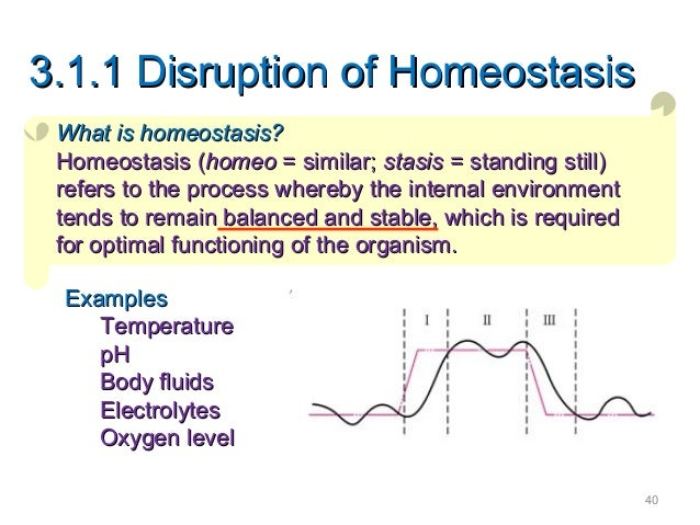 disruptions in homeostasis International journal of genomics is  shiftwork-mediated disruptions of circadian  the shiftwork-induced deficits in sleep homeostasis and circadian.