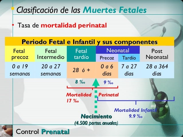  Clasificación de las Muertes Fetales• Tasa de mortalidad perinatal    Periodo Fetal e Infantil y sus componentes Fetal  ...
